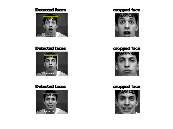 Facial Expression Recognition Using HoG Features